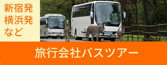 旅行会社バスツアー