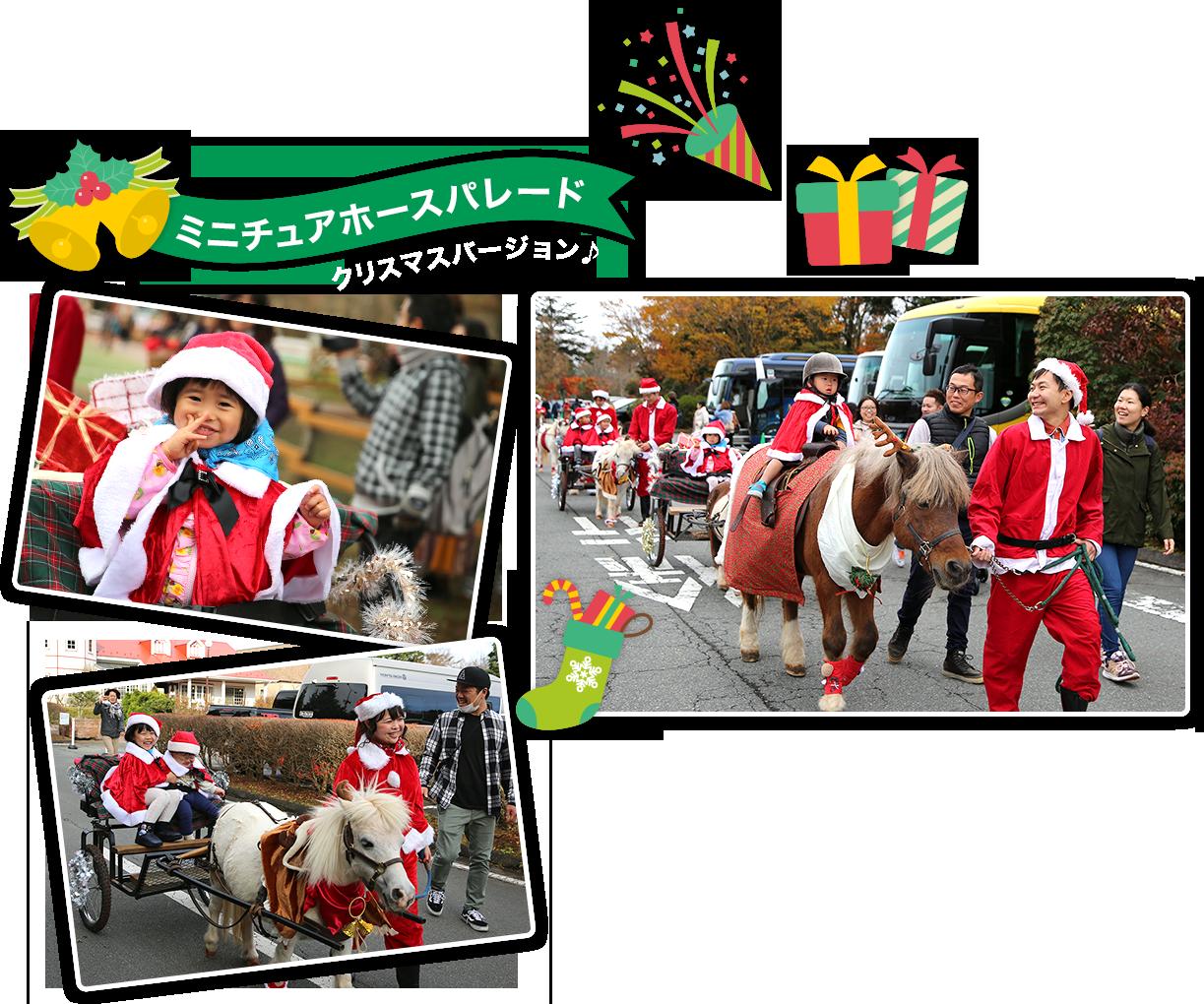 ミニチュアホースパレード クリスマスバージョン♪