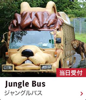 ジャングルバス