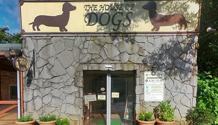 イヌの館 受付