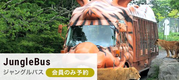 【会員限定・予約】ジャングルバス