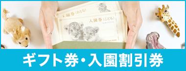 ギフト券・入園割引券