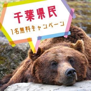 記事「千葉県民1名無料キャンペーン(6月1日から)」の画像