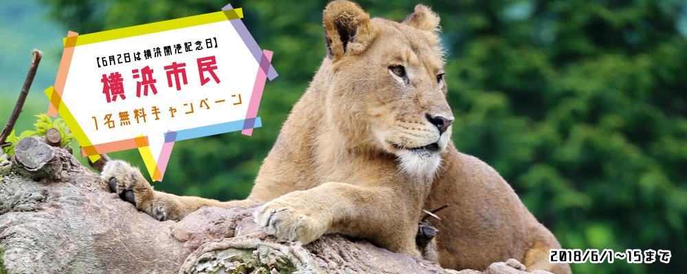 横浜市民1名無料キャンペーン