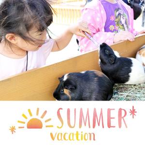 記事「7月20日から夏休みイベントを開催!」の画像