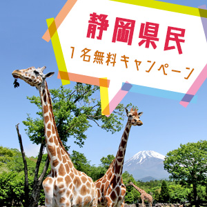 記事「静岡県民1名無料キャンペーン(8月21日から)」の画像