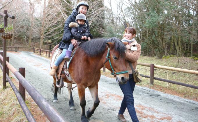 ポニーの親子乗馬体験