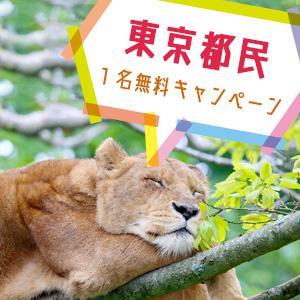 記事「東京都民1名無料キャンペーン(10月1日から)」の画像