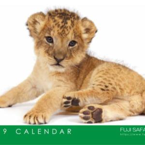 記事「【会員限定】カレンダー プレゼント 11月3日(土)から開始!」の画像