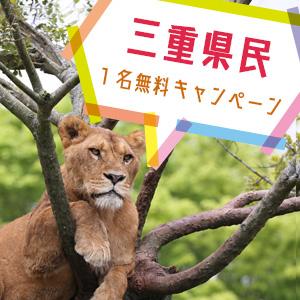 記事「三重県民1名無料キャンペーン(4月1日から)」の画像