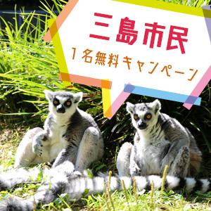 記事「三島市民1名無料キャンペーン(4月16日から)」の画像