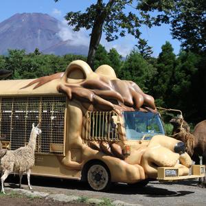 記事「5月分のジャングルバスのWeb予約は4月1日から開始!」の画像