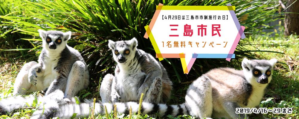 三島市民1名無料キャンペーン