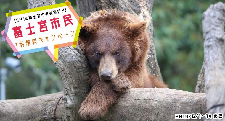 富士宮市民1名無料キャンペーン