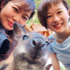 記事「動物たちとの自撮りにチャレンジ!!」の画像