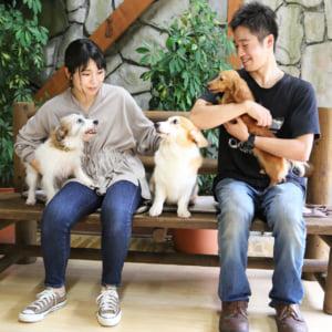 記事「【平日限定】イヌの館ふれあい体験 スタート!」の画像