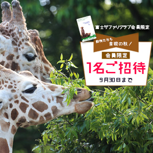 記事「会員限定 1名ご招待キャンペーン!! 9月30日まで」の画像