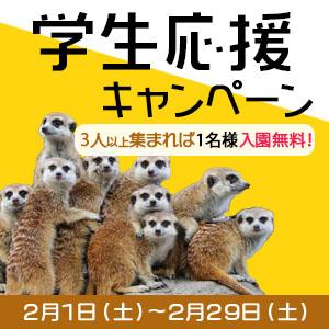 記事「学生応援キャンペーン(2月29日まで)」の画像