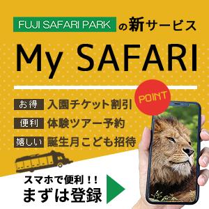 記事「お得で便利な『My SAFARI』!スマホで簡単に登録!」の画像