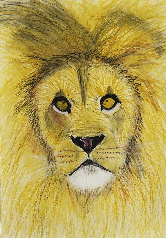 おとなしいライオン