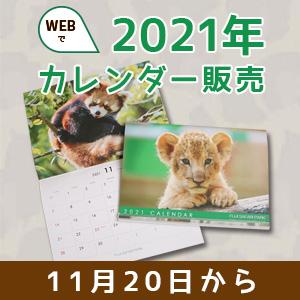 記事「2021年版カレンダー ネット販売(11月20日)」の画像