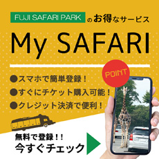 My SAFARI登録