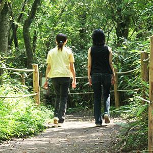 記事「大自然に囲まれた林間コースで、ウォーキングしながら動物観察!」の画像